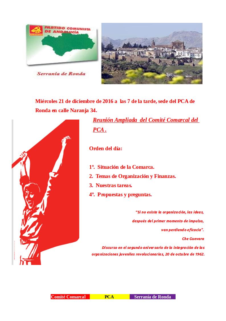 reunion-comarcal-serrania-de-ronda211216